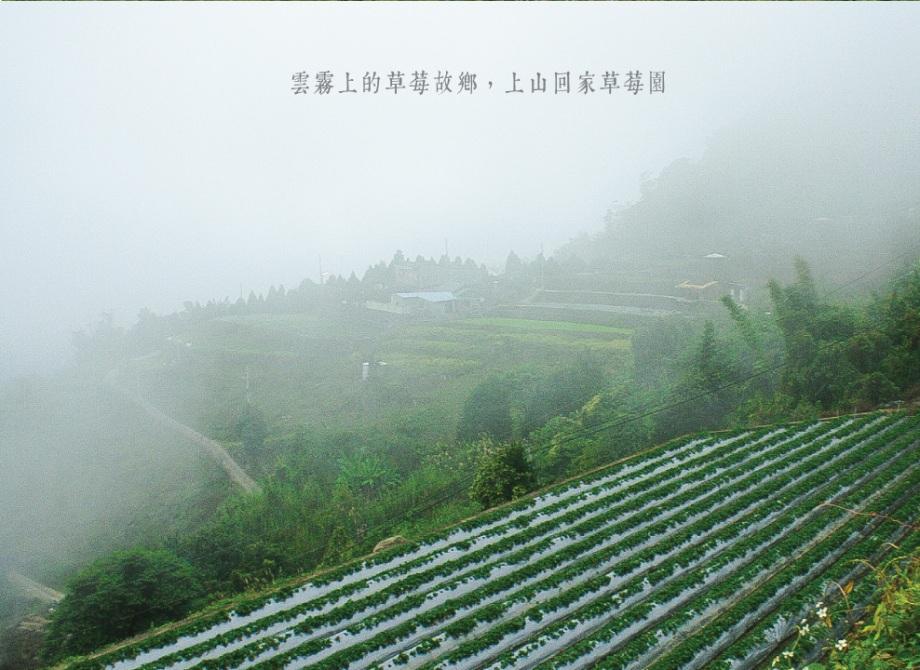 09_farm_pic